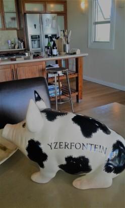 yzerfontein 3